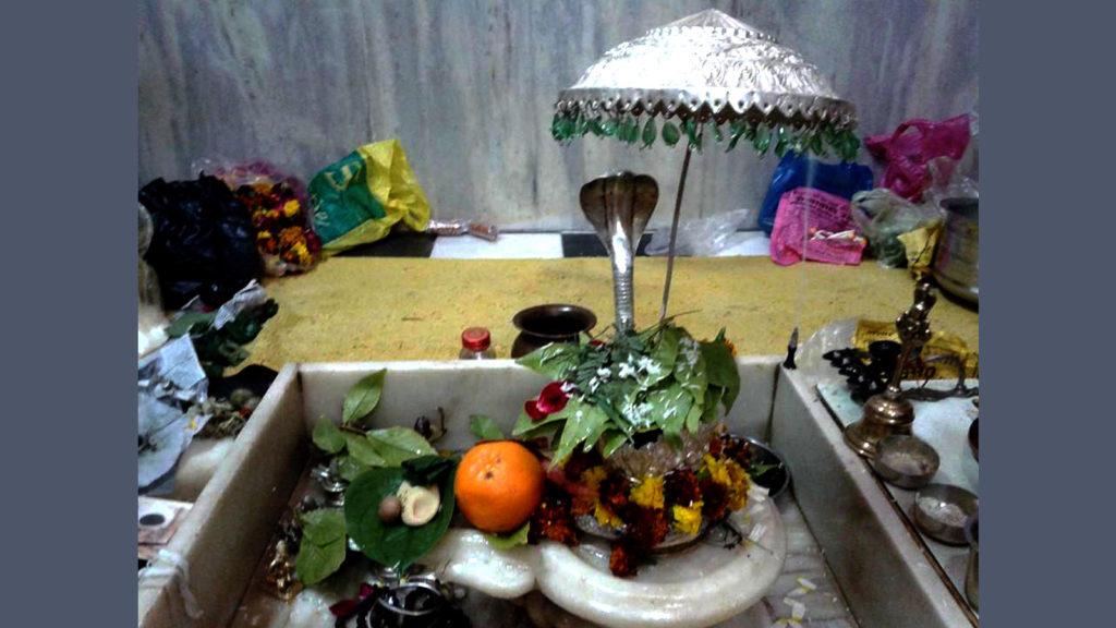 Mahashivratri Shivalya शिवालय