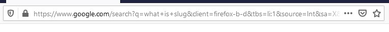 URL with gibberish query parameters and values